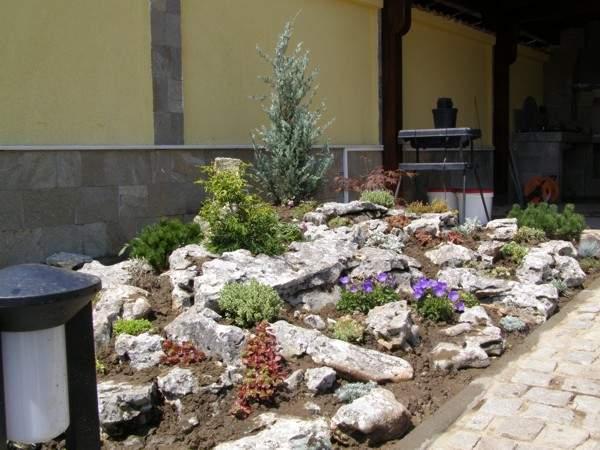 Алпинеум - Скален кът - озеленяване