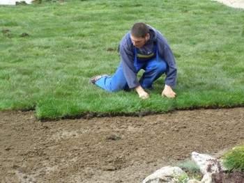 тревен чим - озеленяване
