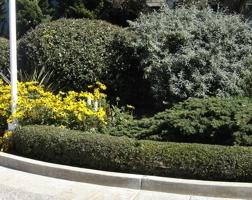 градини