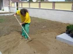 Затревяване - озеленяване